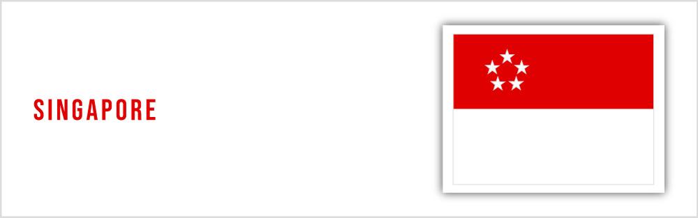 Singapore flag website banner